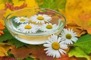 Хорошим эффектом обладает ромашка – народная медицина рекомендует использовать ее для создания мочегонных настоев и состава для микроклизм