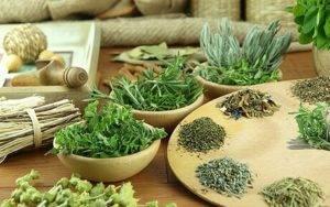 При лечении учащенного мочеиспускания используются настои, отвары и ванны, приготовленные из целебных трав