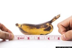 Размер полового члена у мужчин